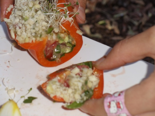 Youth Culinary activity, stuffed raw peppers.