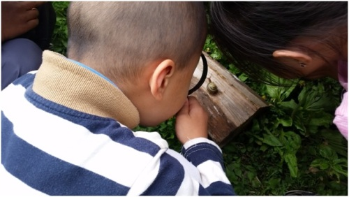 kid looking closely at snail
